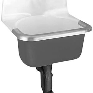 American Standard 7692.000 Lakewell Enameled Cast Iron Service Sink with Plain Back and Rim Guard (Faucet Not Included)
